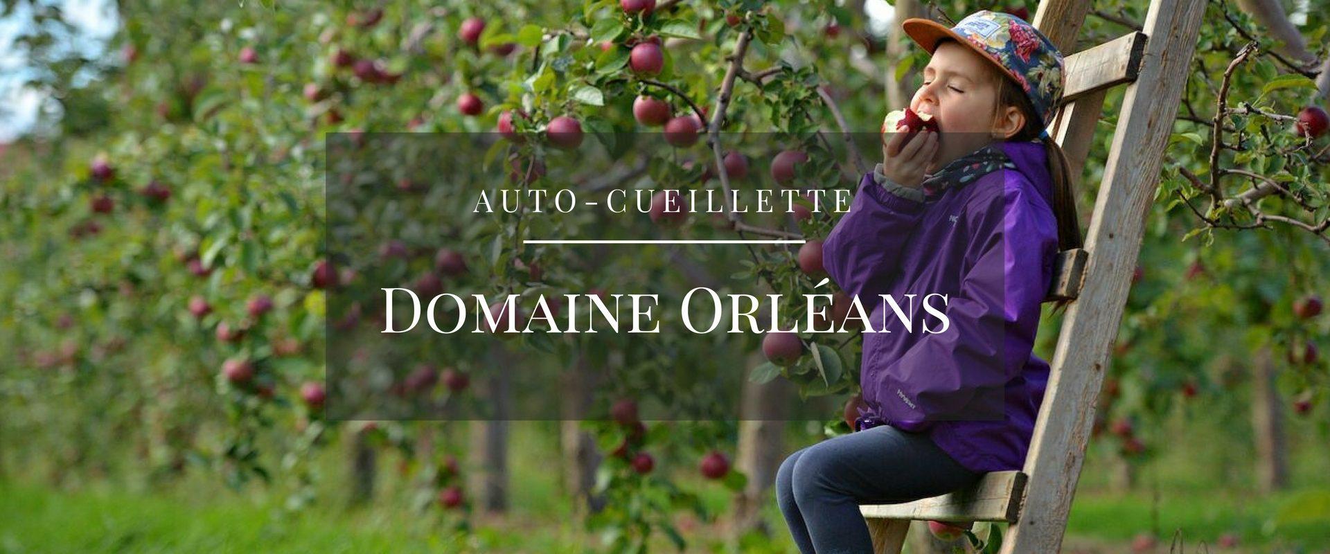 Le Domaine Orléans(6)