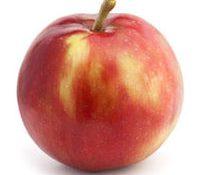 Pomme Jersey Mac